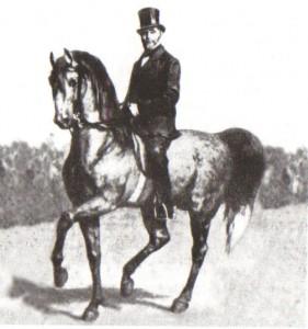 Gustav Steinbrecht