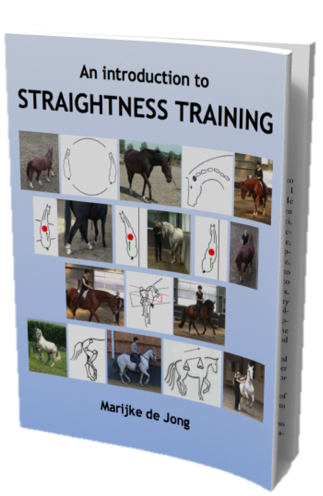 Straightness Training